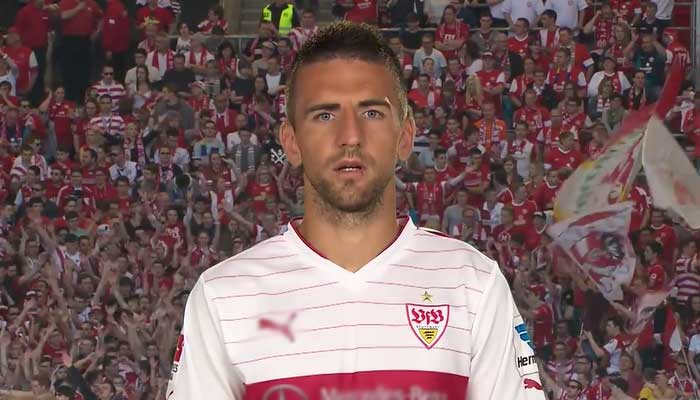 Torschützenkönig Vedad Ibisevic Bundesliga